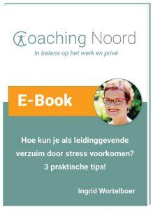 e-book cover leidinggevende